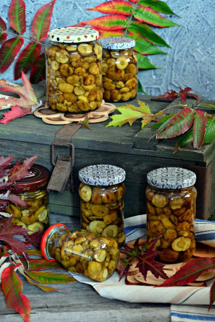 Podgrzybki marynowane woccie, grzyby woccie, grzyby marynowane