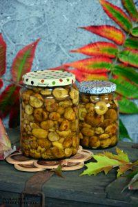 Podgrzybki marynowane woccie, grzyby woccie, grzyby marynowane,
